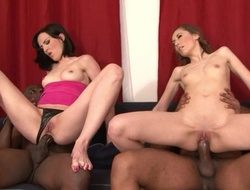 Pair of nasty brunettes pleasuring two horny black studhorses